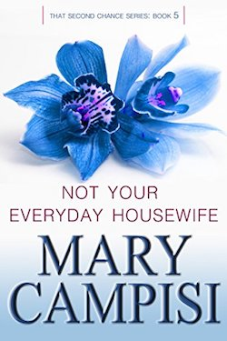 Excerpt - Not Your Everyday Housewife