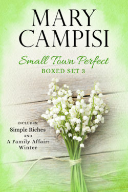 Small Town Perfect Boxed Set 3