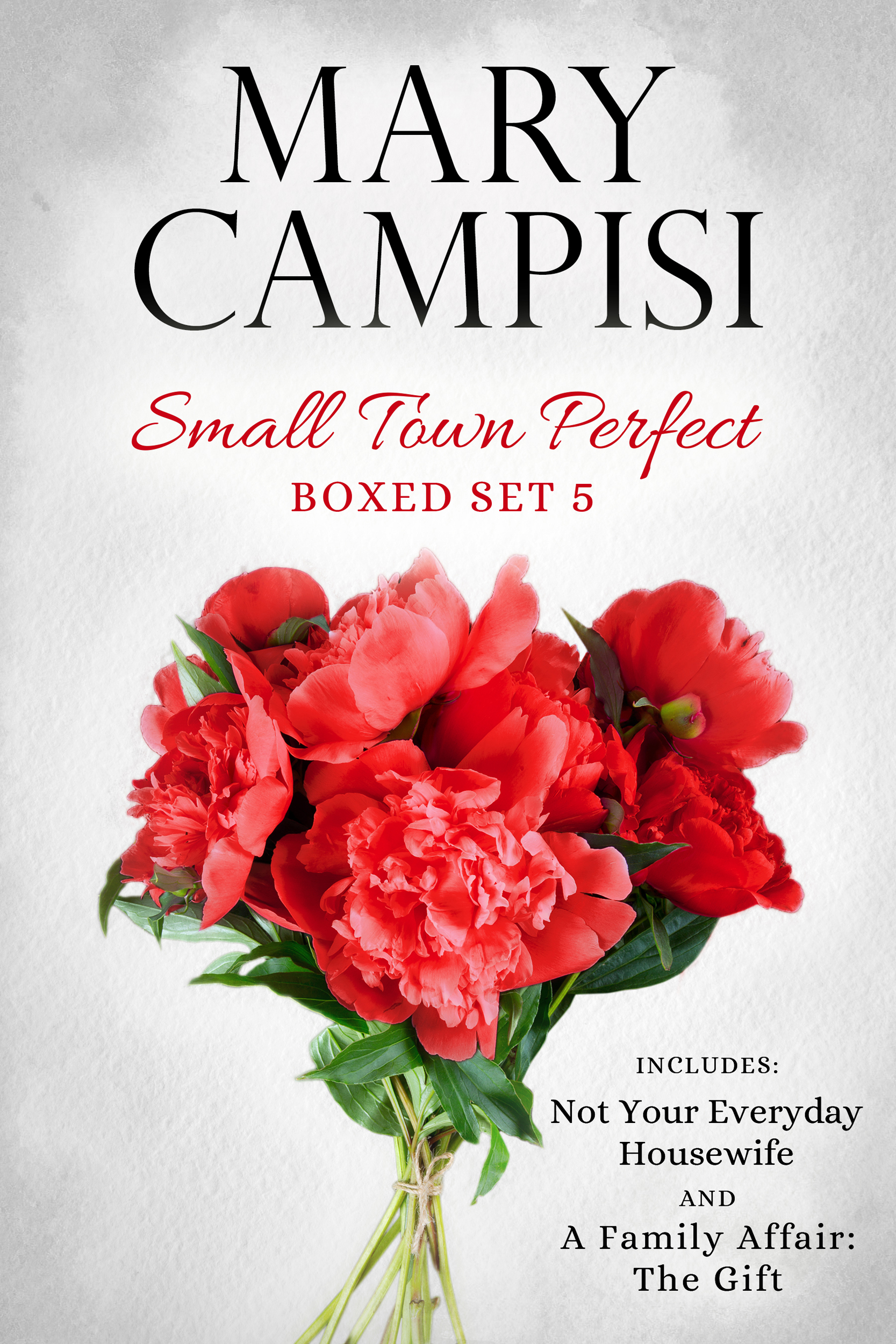 Small Town Perfect Boxed Set 5